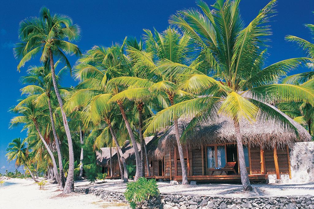 Tikehau Pearl Beach Resort-Beach Bungalow<br/>Image from Leonardo