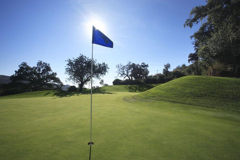 Hotel Puente Romano-El Higueral Golf Course<br/>Image from Leonardo