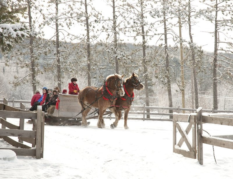 Deerhurst Resort-Sleigh Ride<br/>Image from Leonardo