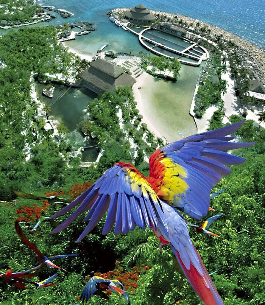 Occidental At Xcaret Destination - Bird Over Xcaret Park <br/>Image from Leonardo