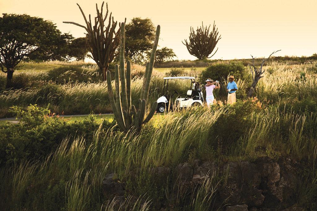 Santa Barbara Beach & Golf Rst - Golf Tee Shot <br/>Image from Leonardo