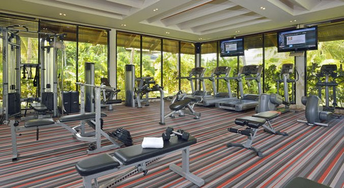 Punta Cana Princess All Suite - Normal PPunta Cana Gym Weights <br/>Image from Leonardo