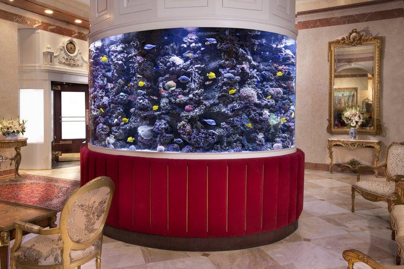 Kimberly Midtown Apartments-The Kimberly's Aquarium at The Kimberly Hotel<br/>Image from Leonardo