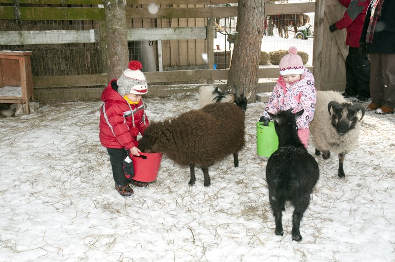 Deerhurst Resort-Petting Farm<br/>Image from Leonardo