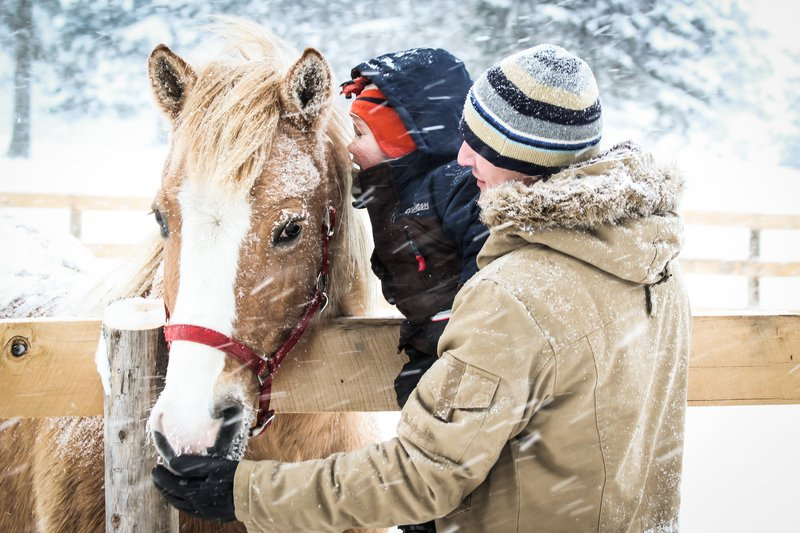 Deerhurst Resort-Winter at the Stables<br/>Image from Leonardo