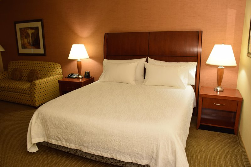 Hilton Garden Inn Dayton Beavercreek-1 King Bed with Sofabed<br/>Image from Leonardo