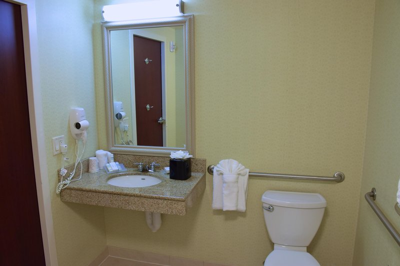 Hilton Garden Inn Dayton Beavercreek-3X3 Accessible Shower Bathroom<br/>Image from Leonardo