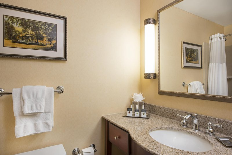 DoubleTree by Hilton Grand Rapids Airport-Guest Bathroom<br/>Image from Leonardo