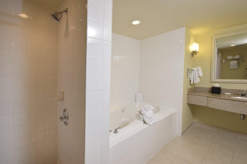 Hilton Garden Inn Dayton Beavercreek-1 King Suite Bathroom<br/>Image from Leonardo
