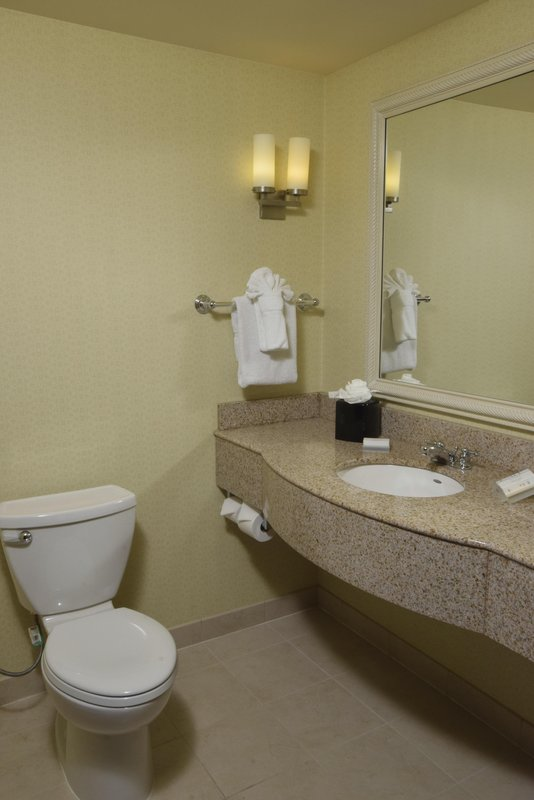 Hilton Garden Inn Dayton Beavercreek-1 King Suite Bathroom Vanity<br/>Image from Leonardo