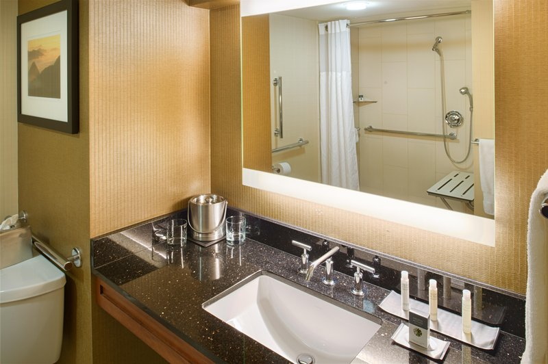 DoubleTree by Hilton Hotel Seattle Airport-Accessible Shower<br/>Image from Leonardo