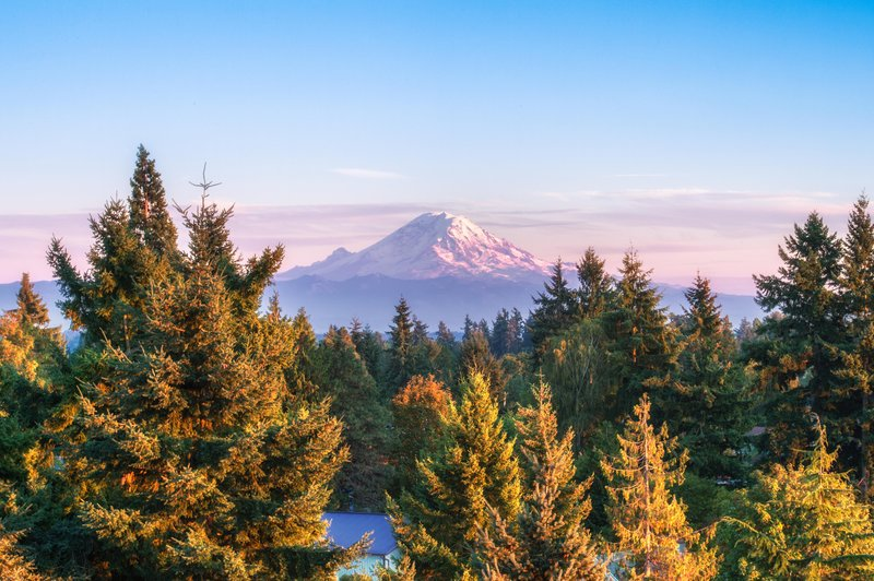 DoubleTree by Hilton Hotel Seattle Airport-Mt. Hood View<br/>Image from Leonardo