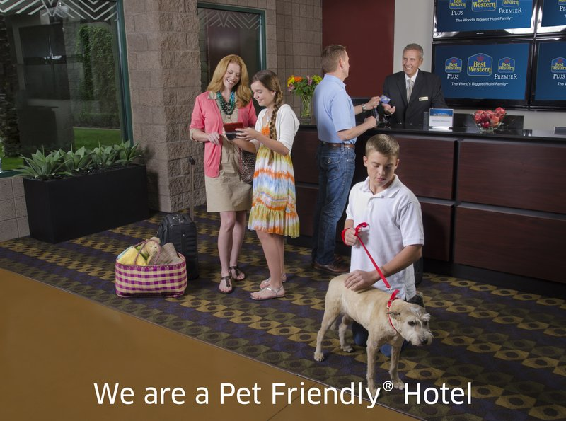Best Western Plus Fresno Airport Hotel-Pet Friendly Hotel<br/>Image from Leonardo