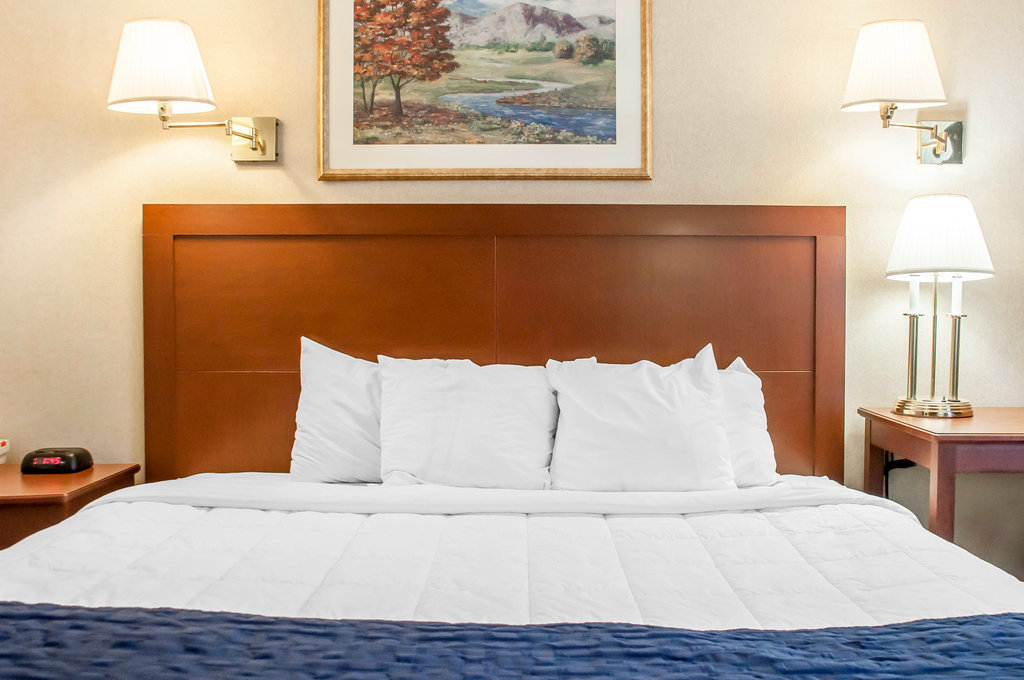 Clarion Hotel Buffalo Airport-Guest room<br/>Image from Leonardo