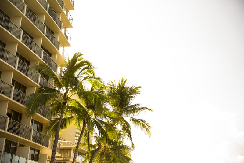 Outrigger Reef Waikiki Beach Resort - Outrigger Reef Waikiki Beach Resort Exterior Sunrise <br/>Image from Leonardo