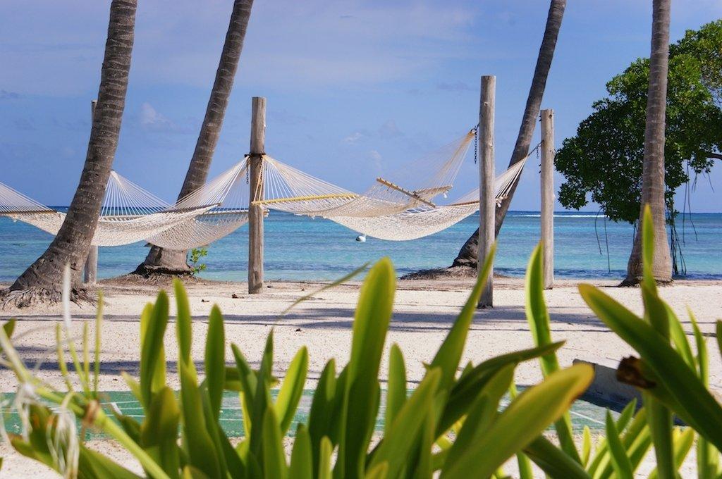 Occidental Punta Cana - The beach <br/>Image from Leonardo