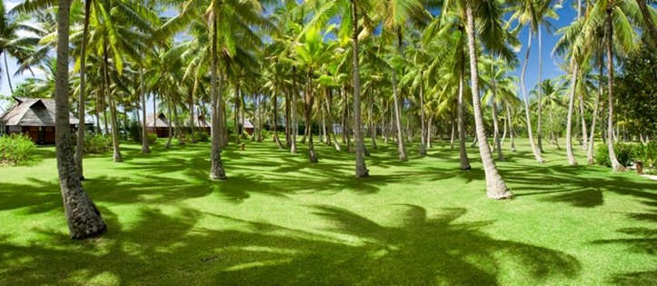 Vahine Island-Private little island of 23 acres<br/>Image from Leonardo