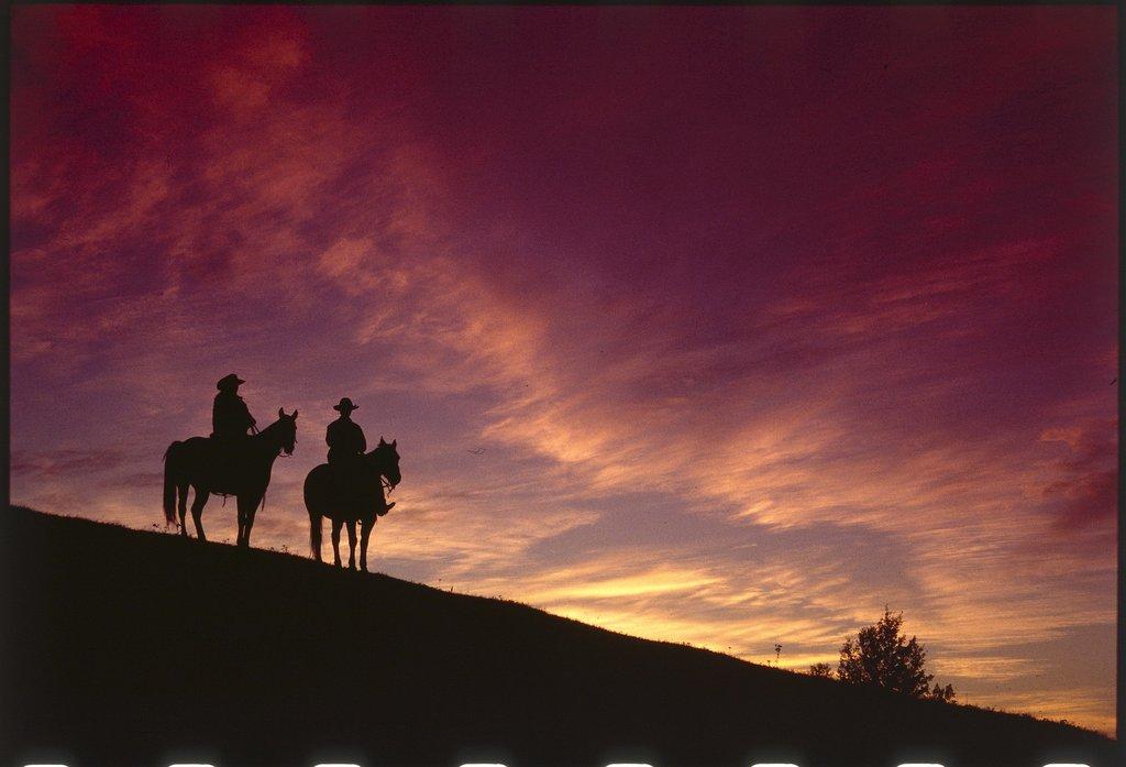 Echo Valley Ranch & Spa-Horses<br/>Image from Leonardo