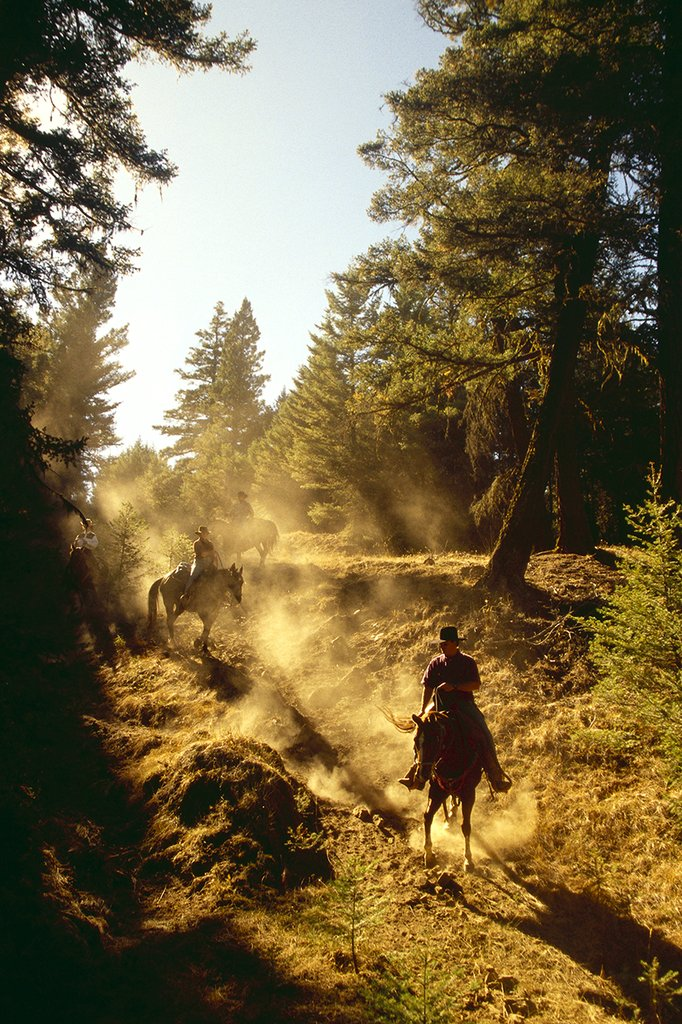 Echo Valley Ranch & Spa-Trail Riders<br/>Image from Leonardo