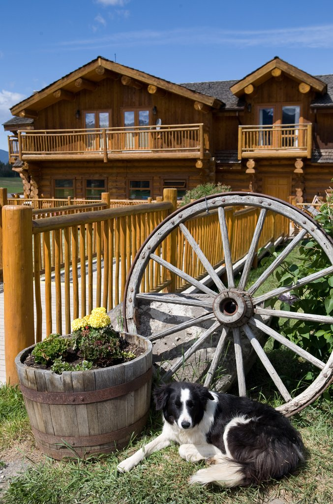 Echo Valley Ranch & Spa-Main Lodge with dog<br/>Image from Leonardo