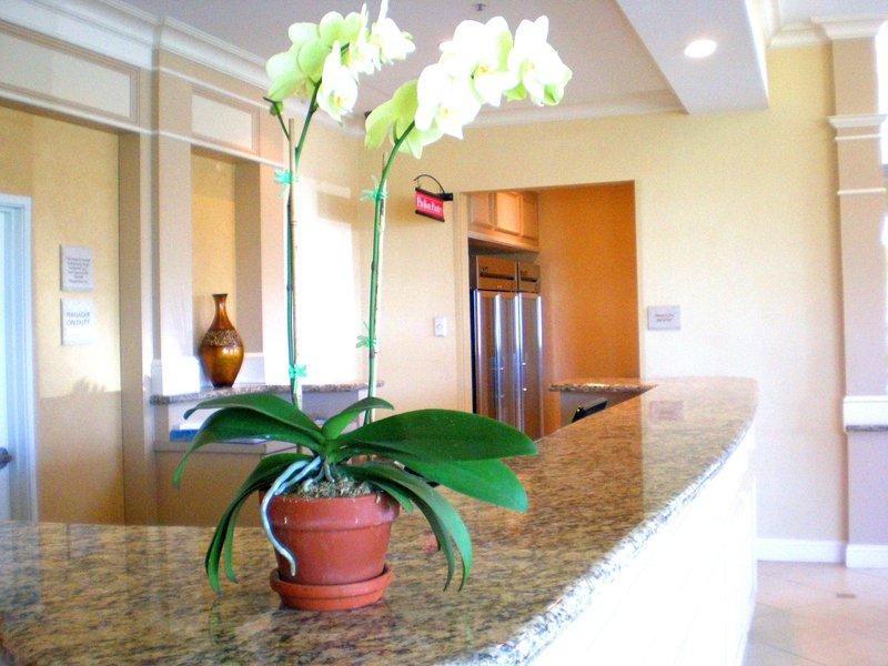 Hilton Garden Inn Riverhead-Front Desk<br/>Image from Leonardo