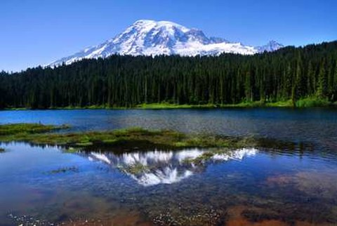 DoubleTree by Hilton Hotel Seattle Airport-Beautiful Mt Rainer<br/>Image from Leonardo