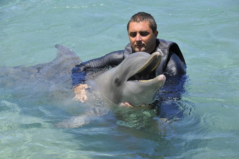 Intercontinental Moorea Resort-Swim and interact with Dolphins<br/>Image from Leonardo