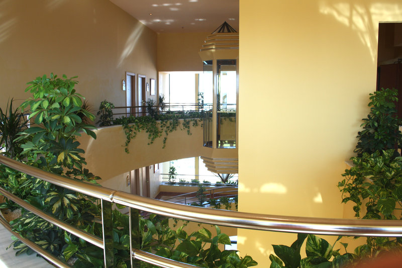Senator Marbella Spa Hotel-Interior<br/>Image from Leonardo