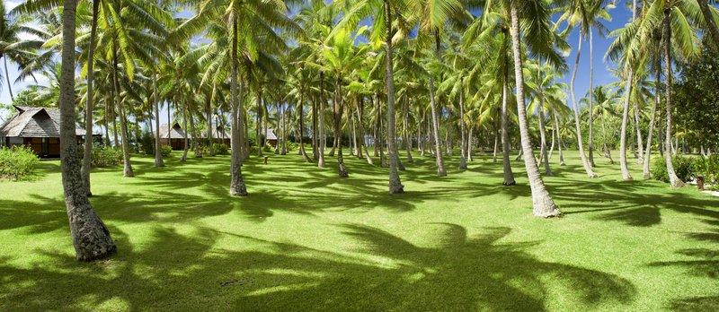 Vahine Island-Private little island of 23 acres<br/>Image from Leonardo