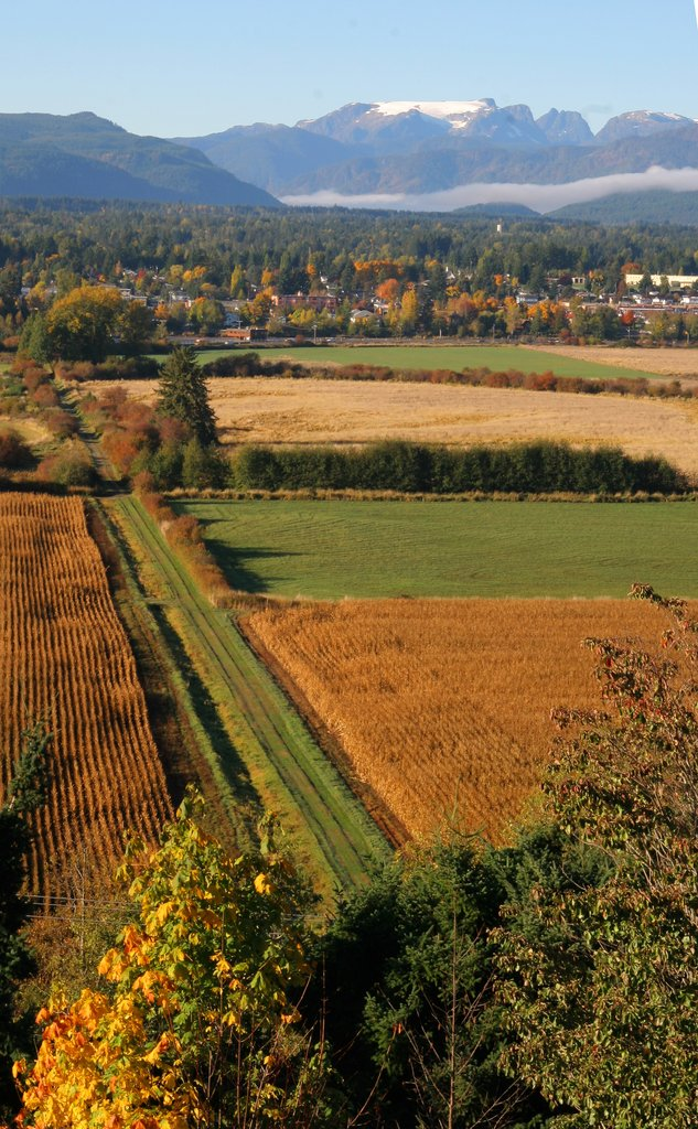 Holiday Inn Express & Suites Courtenay Comox Valley SW-Comox Bay Farm<br/>Image from Leonardo