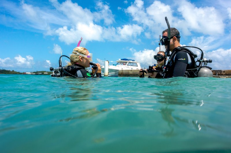 Grotto Bay Resort-Dive Lesson<br/>Image from Leonardo