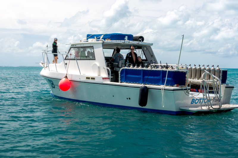 Grotto Bay Resort-Bottom Time Dive Boat<br/>Image from Leonardo