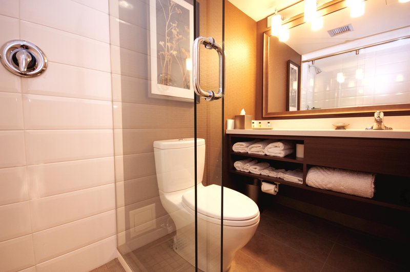 DoubleTree by Hilton Hotel & Conference Centre Regina-Walk in Shower<br/>Image from Leonardo