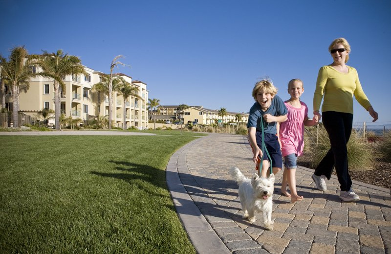 Dolphin Bay Resort and Spa-Family and Pet Friendly Resort<br/>Image from Leonardo
