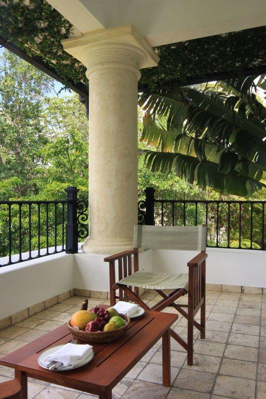 Casa Colonial Beach & Spa-Tropical Terrace<br/>Image from Leonardo
