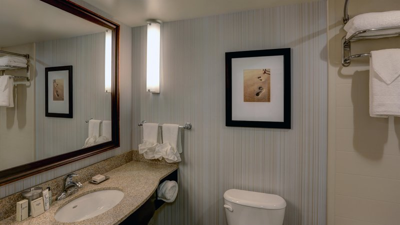Hilton Garden Inn Virginia Beach Oceanfront-Bathroom<br/>Image from Leonardo