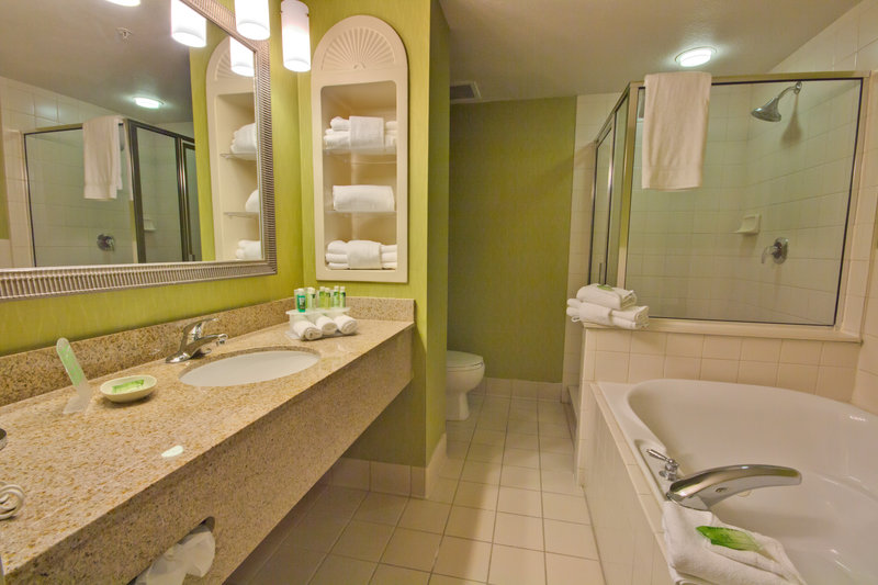 Holiday Inn Express & Suites Tampa-I-75 @ Bruce B. Downs-Executive Suite Bathroom with Jacuzzi Tub<br/>Image from Leonardo