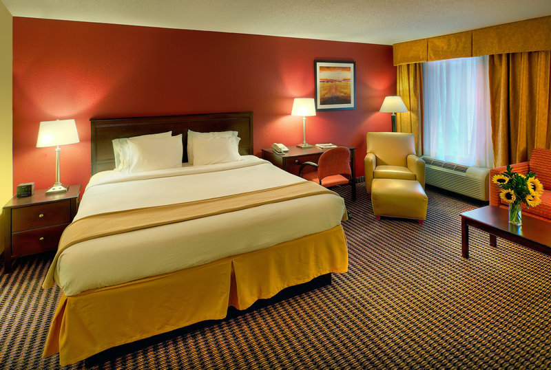 Holiday Inn Express Charleston US Hwy 17 & I-526-King Bed Guest Room<br/>Image from Leonardo