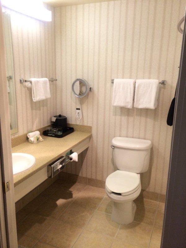 Holiday Inn Selma-Swancourt-King Room Bath<br/>Image from Leonardo