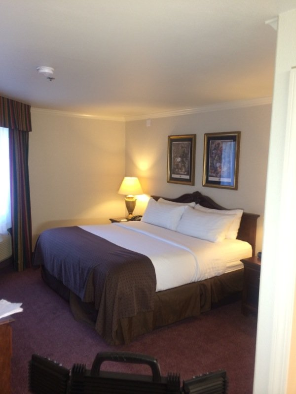 Holiday Inn Selma-Swancourt-XOTN King Suite Bed<br/>Image from Leonardo