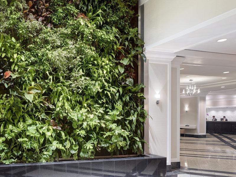 Chelsea Hotel Toronto-Green Wall in the Lobby<br/>Image from Leonardo