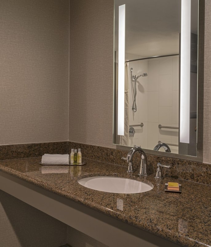 DoubleTree by Hilton Austin-Premium Accessible Bathroom with Tub<br/>Image from Leonardo
