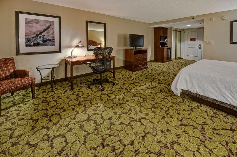 Hilton Garden Inn Indianapolis Northeast/Fishers-King Bed with Whirlpool<br/>Image from Leonardo