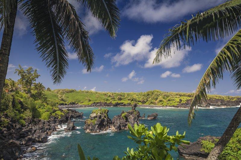 Hyatt Regency Maui Resort - Wainapanapa <br/>Image from Leonardo