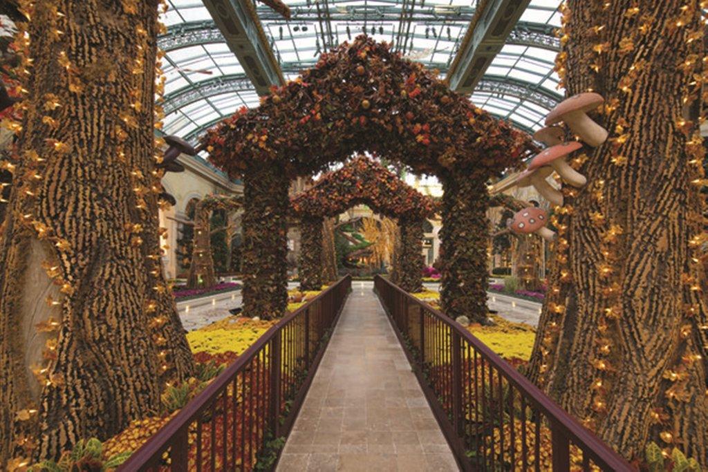 Bellagio - Conservatory Botanical Garden <br/>Image from Leonardo