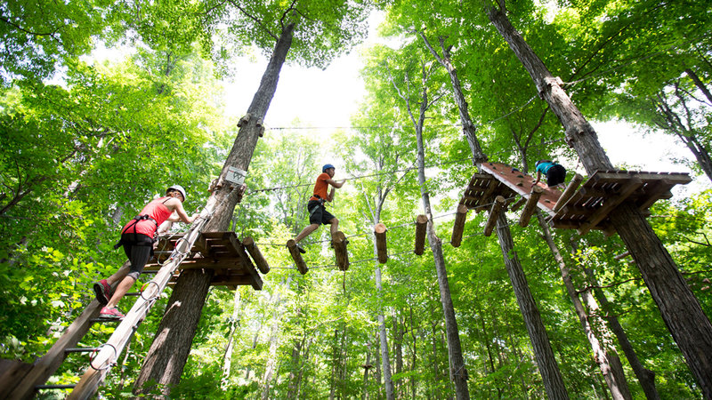 Deerhurst Resort-Treetop Trekking At Deerhurst<br/>Image from Leonardo