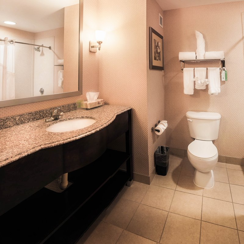 Holiday Inn Express Baltimore-Downtown-Guest Bathroom<br/>Image from Leonardo