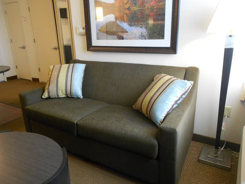 Candlewood Suites Pittsburgh-Airport-Sleeper sofa loveseat - makes to full bed<br/>Image from Leonardo