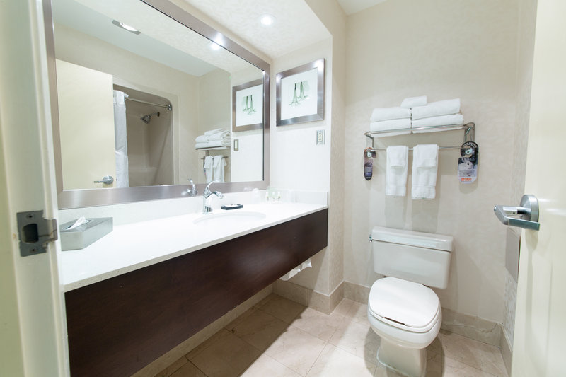 Holiday Inn Hotel & Suites Windsor (Ambassador Bridge)-Guest Bathroom<br/>Image from Leonardo