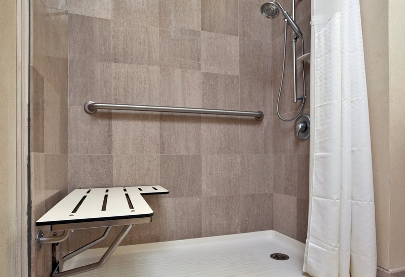 Holiday Inn Express & Suites North East (Erie I-90 Exit 41)-Wheelchair Accessible Roll in Shower<br/>Image from Leonardo